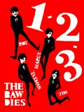 THE BAWDIES!!!